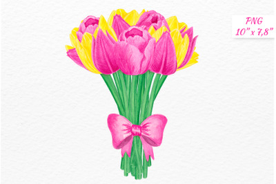 Watercolor tulips bouquet Spring flowers clipart