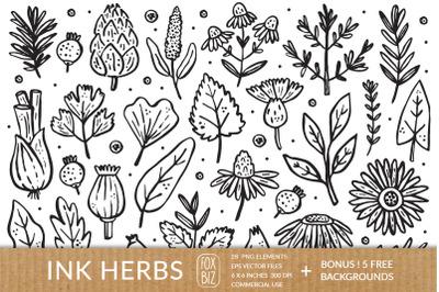 Ink herbs, plants. PNG EPS JPEG.