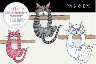 Hanging Cats with Glasses PNG & EPS