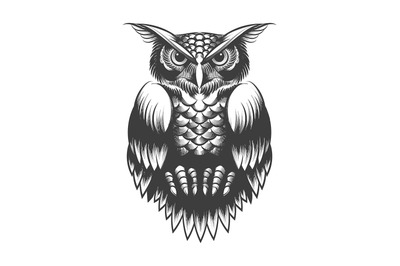 Owl Tattoo in Engraving Style