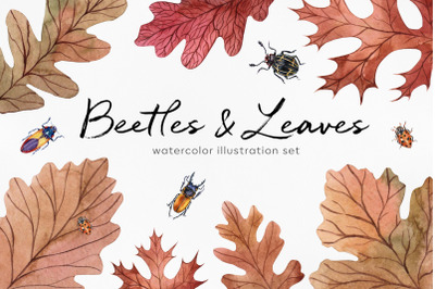 Autumn watercolor set illustrations beetles, leaves, acorns