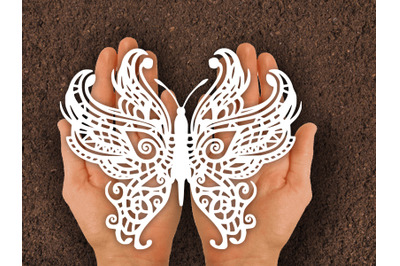 Paper cut Template / Butterfly