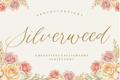 Silverweed Beautiful Calligraphy Script Font