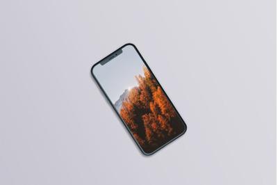 Phone 11 Mock-Ups