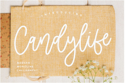 Candylife Modern Monoline Calligraphy Font