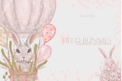 Field bunnies. Delicate collection