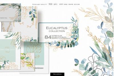 Eucalyptus golden collection