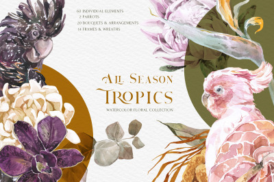 All Season Tropics Floral Watercolor