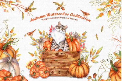 Watercolor Autumn Cat Collection