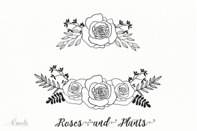 Divider Roses Bouquets
