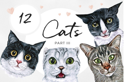 PART 3. Watercolor cat illustrations. Cute 12 cats.