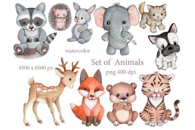 Set of  Animals. Watercolor illustrations.