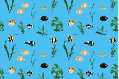 Marine fish colour