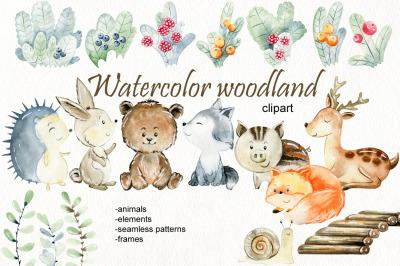 Woodland. Watercolor set.