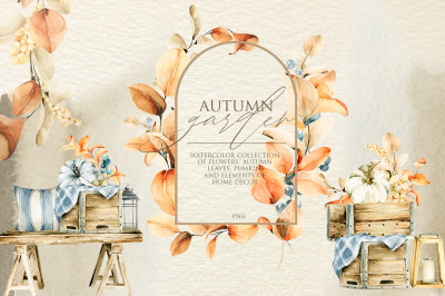 Autumn garden. Watercolor floral collection