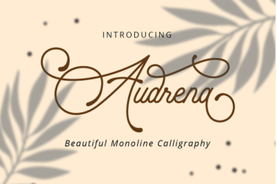 Audrena - Beautiful Monoline Font