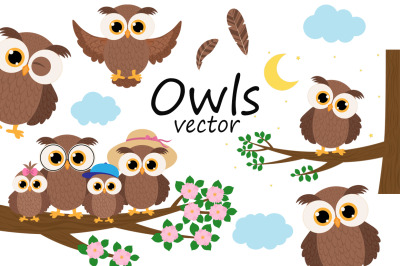 Set Cute Owls vector illustration