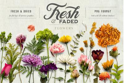 Fresh & Dried Flower Scene Creator