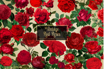 Vintage Red Roses Clipart