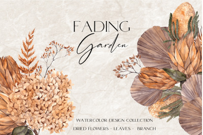 Fading Garden. Dried  floral collection