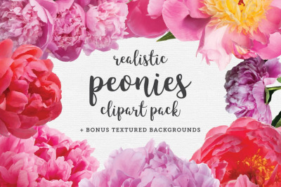 Realistic Peonies Clip Art Pack