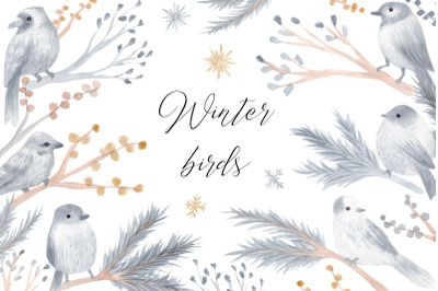 Watercolor Winter Birds. Christmas Cliparts and Patterns