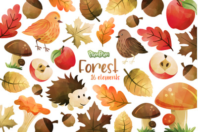 Forest Watercolor Cliparts