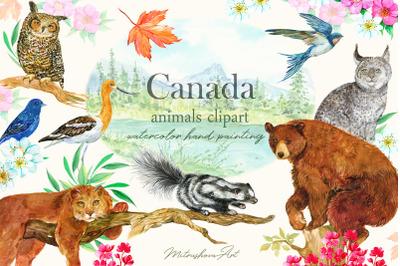 Canada.Animals clipart watercolor