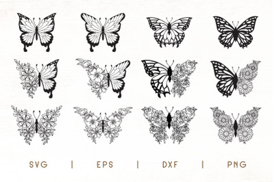 Flower Butterfly SVG - Floral Butterfly Pack of 12 Designs