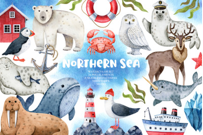 Northern Sea Animals Watercolor Set