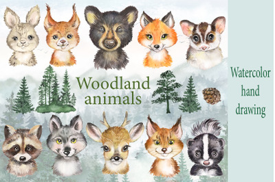 Woodland animals watercolor clipart. Forest cute animals portrait
