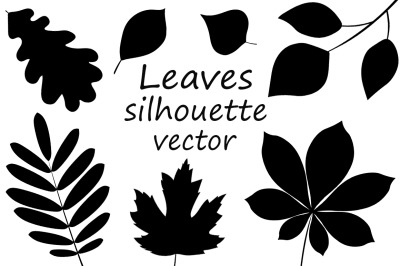 Collection Leaves silhouette. Autumn Leaves vector illustration