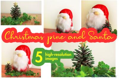 Christmas pine and Santa stock photos.