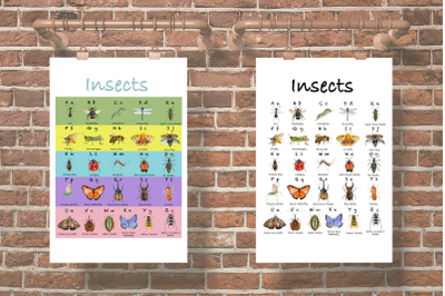 Watercolor Insects ABC Posters