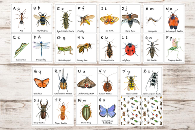 Watercolor ABC Insects Flashcards
