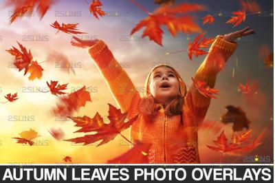 Autumn leaf overlay & Photoshop overlay