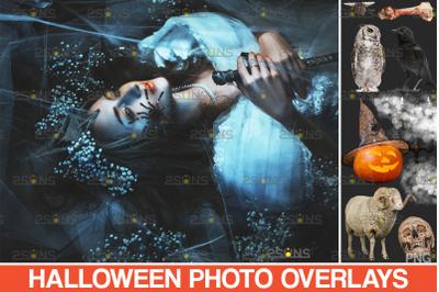 Halloween overlays & Photoshop overlay: Smoke/fog overlay