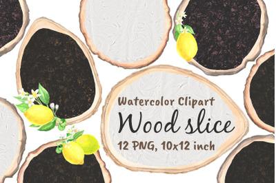 Wood Slice Watercolor Png