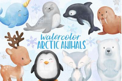 Arctic Animals Watercolor Illustrations