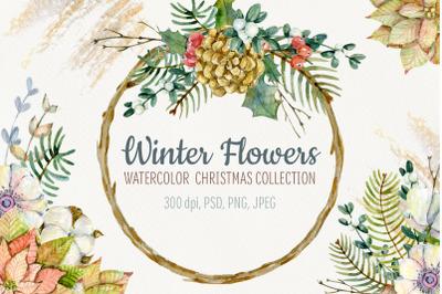 Winter flowers. Watercolor Christmas set