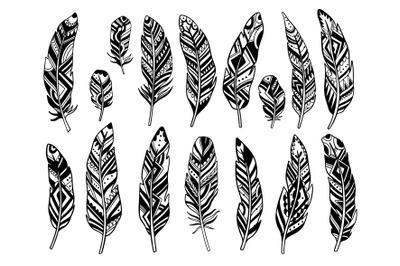 Feather set black decor color