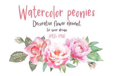 Watercolor peonies and roses decorative flower element