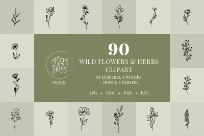 Wildflower and Herbs Hand Drawn Clip Art Pack
