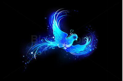 Blue Flame Bird