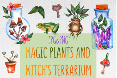 Magic plants and witch's terrariums