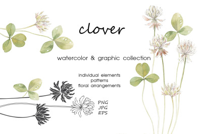 Clover. Watercolor & graphic.