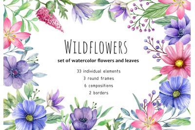 Watercolor wildflowers and leaves clipart. Hand painted PNG