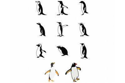 penguins SVG, penguin bundle PNG, DXF, clipart, EPS, vector