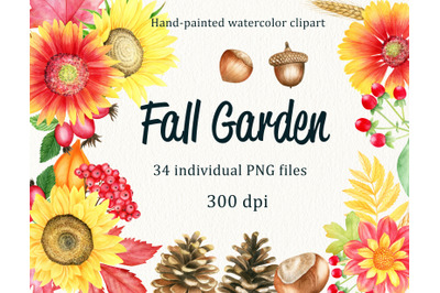 Watercolor fall floral and forest elements. Floral autumn PNG