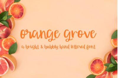 Orange Grove Script Font
